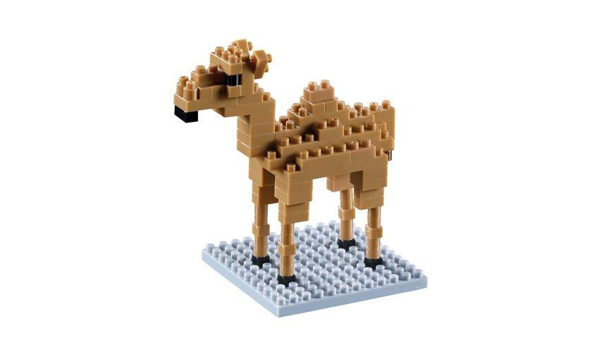 Brixies Camel (200.109)