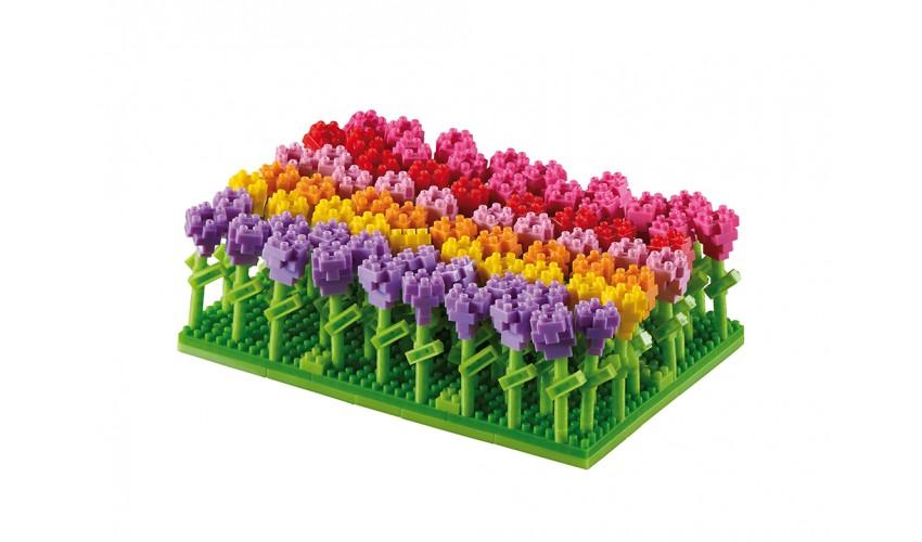 Brixies Tulipsfield (200.142)