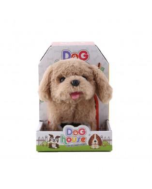 B/O Brown Jumping Dog